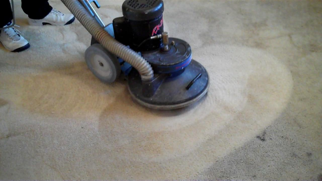 Why Esmerio S Monster Can Take Care Of Your Carpet Chino