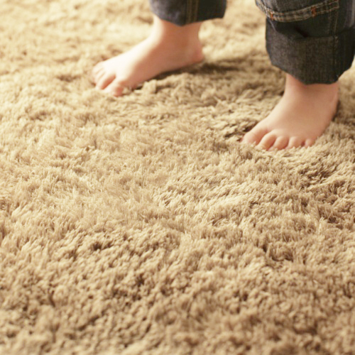 The good and the bad when it comes to carpet part 1 for for Soft carpet for bedrooms